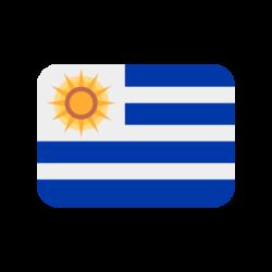 agencia de posicionamiento seo uruguay